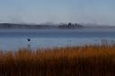 fall morning Agimak Lake