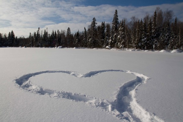 snowshoe track heart