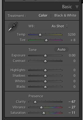 Lightroom Develop Mode