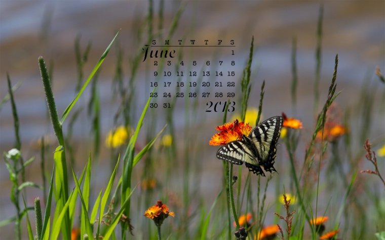 free desktop calendar June 2013 1440x900
