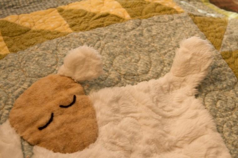 sleepy sheep detail
