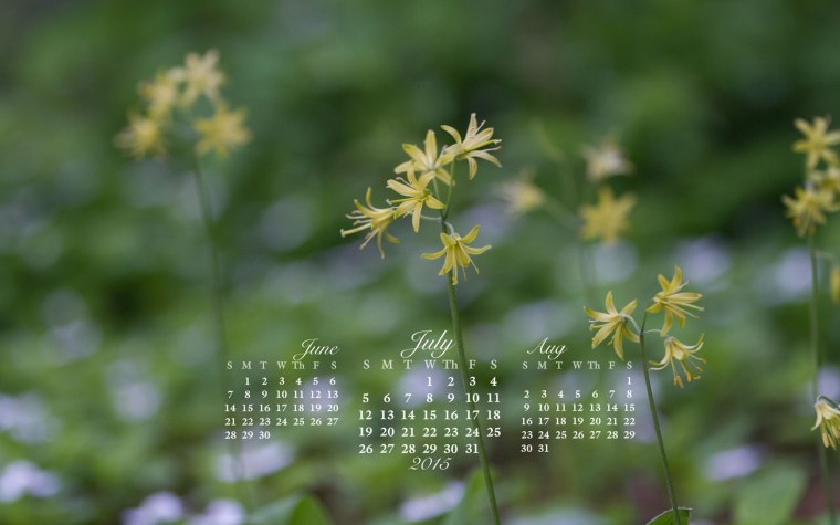 free desktop calendar July 2015_1440x900