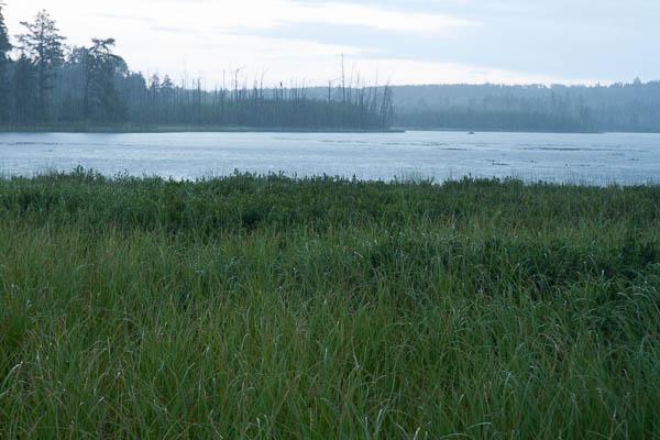 Three Mile Lake rain