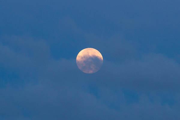 blue moon July 2015
