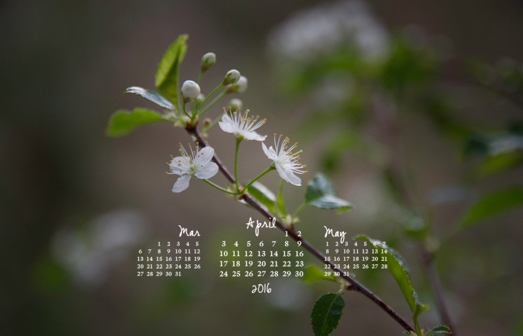 free desktop calendar April 2016_1440x900