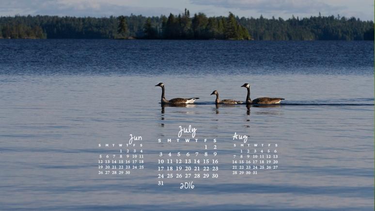 free desktop calendar July 2016_1440x900