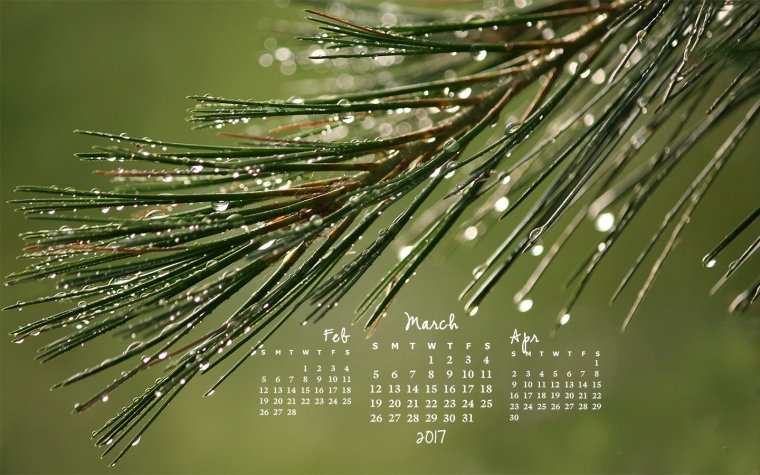 free desktop calendar March 2017_1440x900