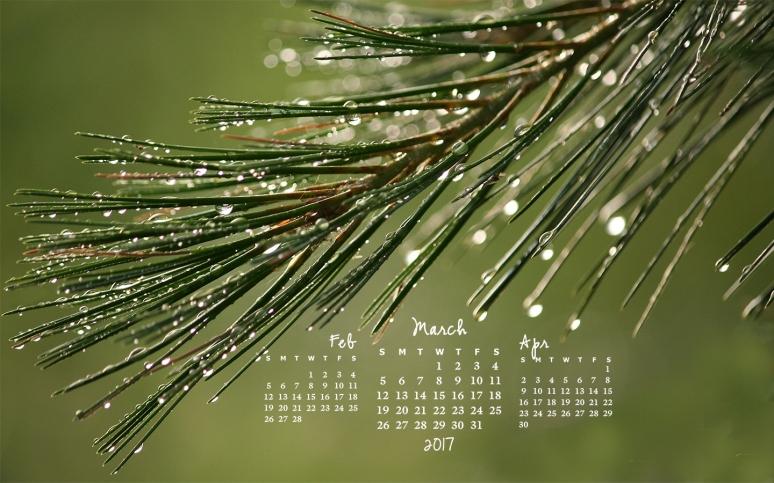 free desktop calendar March 2017_1440x900
