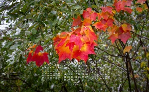 free desktop calendar October 2018_1440x900