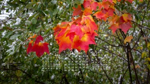 free desktop calendar October 2018__1600x900